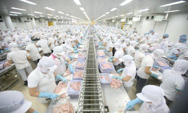 Kế toán doanh nghiệp thực phẩm có những nghiệp vụ cơ bản gì?