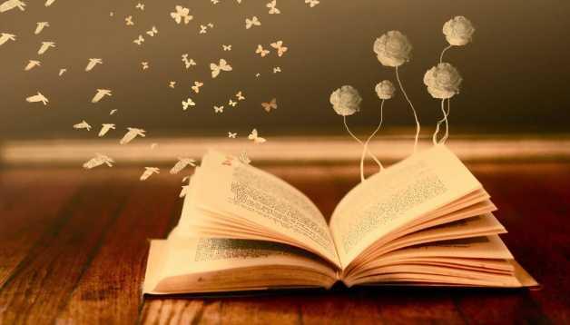 Đọc sách hàng ngày giúp cuộc sống tôi hoàn toàn thay đổi: Hiểu biết nhiều hơn, trở thành một người thú vị và sâu sắc.